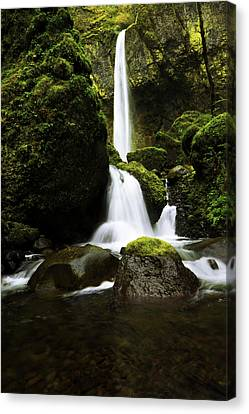 Flow Canvas Print by Chad Dutson