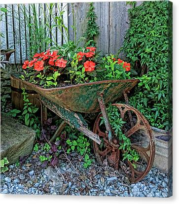 Flower Barrow Canvas Print
