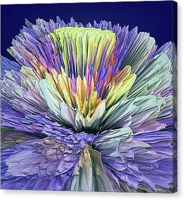 Flower Boost Canvas Print