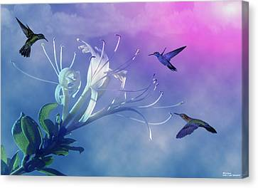 Flower  Canvas Print by Evelyn Patrick