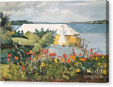 Flower Garden And Bungalow, Bermuda, 1899  Canvas Print by Winslow Homer
