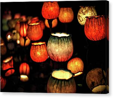 Flower Lamps Canvas Print