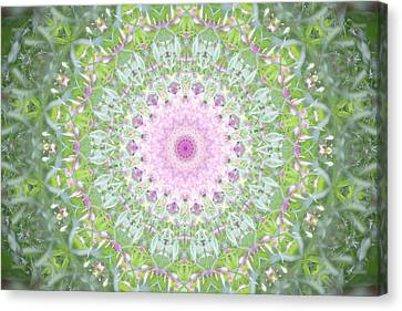Canvas Print featuring the photograph Flower Mandala - B by Anthony Rego