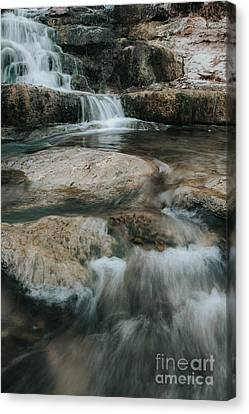 Canvas Print featuring the photograph Flower Park by Iris Greenwell