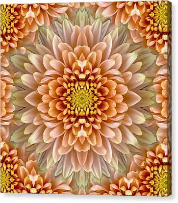 Flower Power Canvas Print by Sumit Mehndiratta