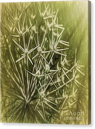 Flower Rays Canvas Print