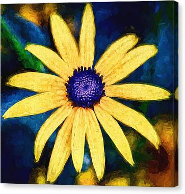 Flower - Rudbeckia - Yellow Petals And Blue Buttons Canvas Print by Black Brook Photography