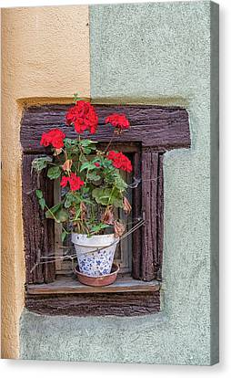 Canvas Print featuring the photograph Flower Still Life by Alan Toepfer