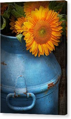Flower - Sunflower - Little Blue Sunshine  Canvas Print by Mike Savad