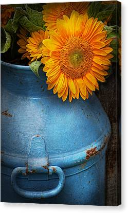 Flower - Sunflower - Little Blue Sunshine  Canvas Print by Mike Savad
