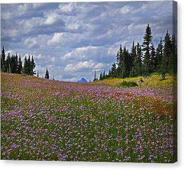 Flowered Rise Canvas Print