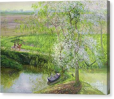Flowering Apple Tree And Willow Canvas Print by Timothy Easton