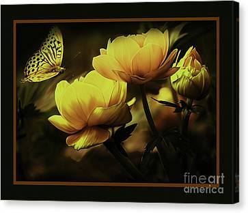 Flowers 093 Canvas Print by Gull G