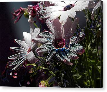 Flowers Canvas Print by Stuart Turnbull