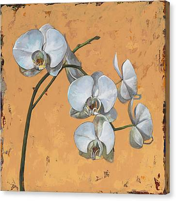 Orchids Canvas Print - Flowers #8 by David Palmer