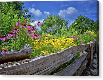 Flowers Along A Wooden Fence Canvas Print