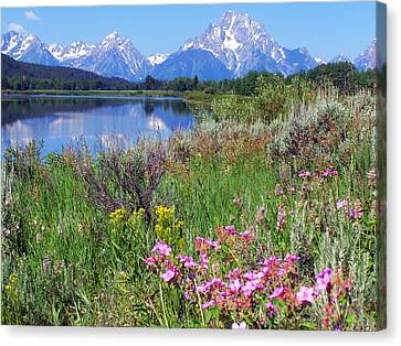 Flowers At Oxbow Bend Canvas Print