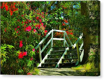 Flowers Bloom Alongside Magnolia Plantation Bridge - Charleston Sc Canvas Print