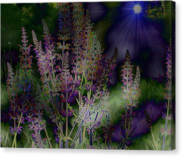 Flowers By Moonlight Canvas Print by Barbara S Nickerson