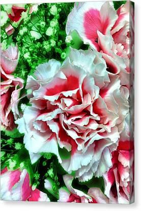 Flowers Canvas Print by Carlos Avila