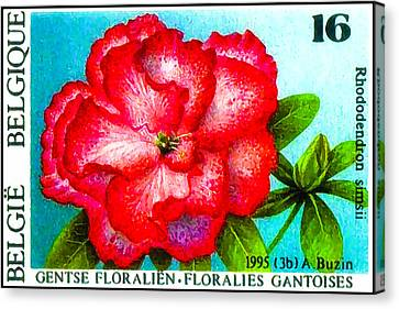 Botanical Canvas Print - Flowers Exhibition Gent Belgium 6 by Lanjee Chee