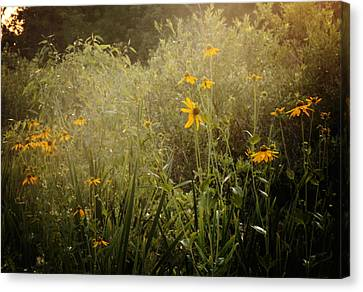 Flowers For My Love Canvas Print