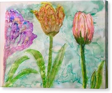 Tulips A'bloom Canvas Print