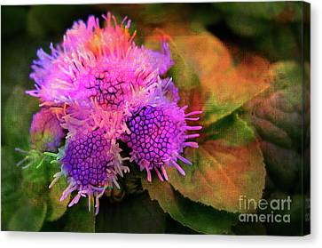 Flowers In The Garden Canvas Print by Judi Bagwell