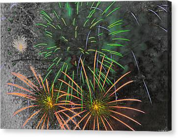 Pyrotechnic Canvas Print - Flowers In The Sky by Marnie Patchett