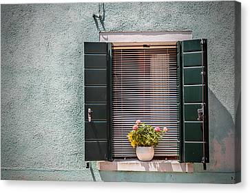 Flowers In The Window 3 Canvas Print by Chris Fletcher