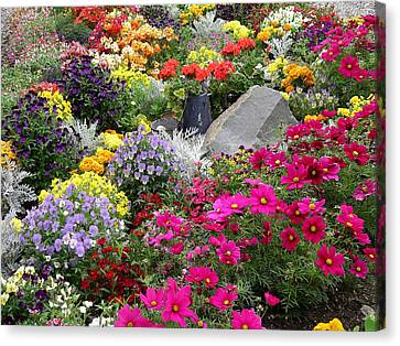 Flowers Of Skagway Canvas Print by Karen Nicholson