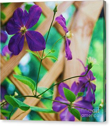 Canvas Print featuring the painting Flowers Purple by Eric  Schiabor