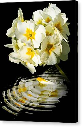 Flowers Canvas Print by Svetlana Sewell