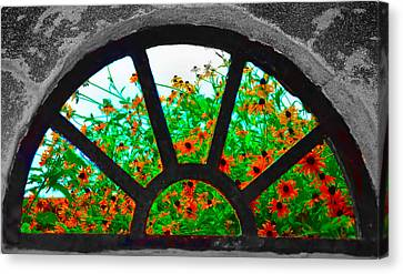 Flowers Through Basement Window At Monticello Canvas Print