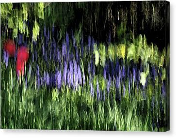 Flowers Thru Wavy Glass Canvas Print by ShaddowCat Arts - Sherry