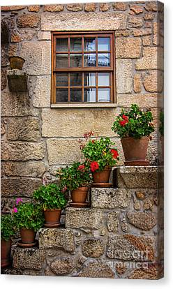 Flowery Decorations Canvas Print by Carlos Caetano