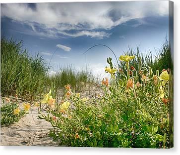 Flowery Dunes Canvas Print