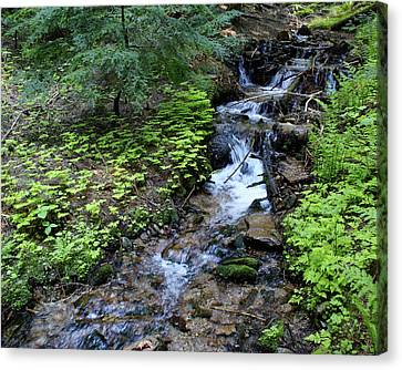 Canvas Print featuring the photograph Flowing Creek by Ben Upham III