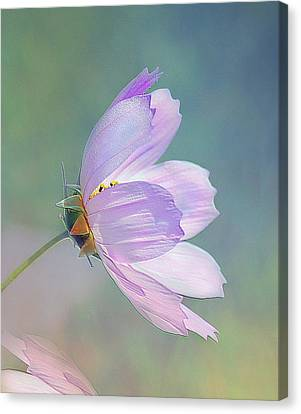 Canvas Print featuring the photograph Flowing In The Wind by Elaine Manley