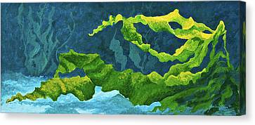 Flowing Kelp Canvas Print by Marion Rose