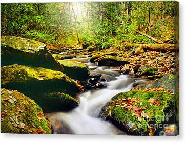 Flowing Softly Canvas Print by Darren Fisher