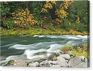 Canvas Print featuring the photograph Flowing Umpqua River by Tyra  OBryant