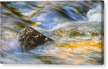 Flowing Water Canvas Print by Adam Romanowicz