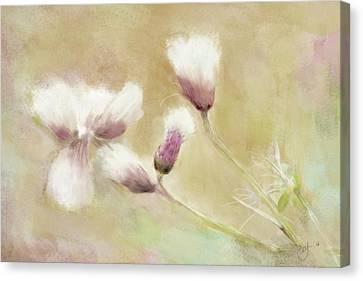 Fluffy Thistle Canvas Print