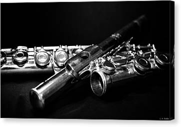Flute Series I Canvas Print by Lauren Radke