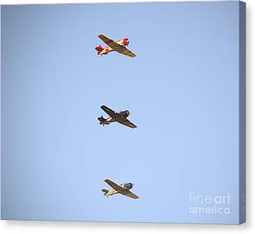 Fly Boys Canvas Print