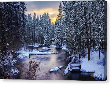 Canvas Print featuring the photograph Fly Fisherman On The Metolius by Cat Connor
