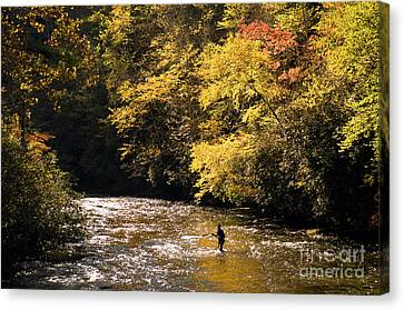 Canvas Print featuring the photograph Fly Fisherman On The Tellico - D010008 by Daniel Dempster