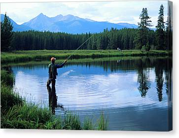 Fly Fishing In Rocky Mountain National Park Canvas Print by Peter Skiba