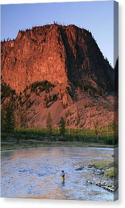 Fly Fishing On The Madison River Canvas Print by Drew Rush
